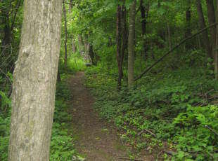 Tuscarora Nature Trail